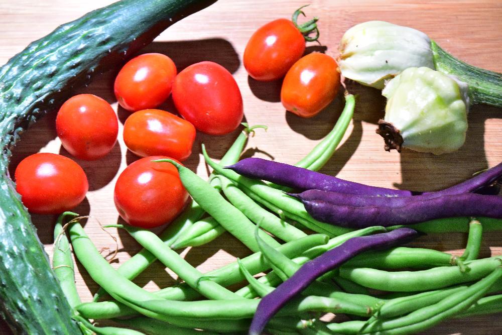 野菜の3つのタイプと施肥のポイント